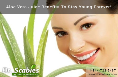 Aloe Vera Juice Benefits To Stay Young Forever!