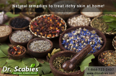 Natural remedies to treat itchy skin at home!