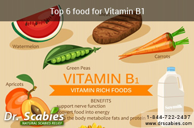 Top 6 (Thiamine) Vitamin B1 Foods