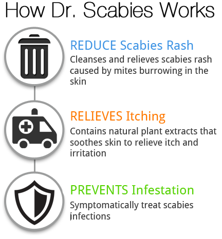 Most Recommended Scabies Treatment Home Remedy For Scabies Dr Scabies